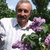 Геннадий Дьячук, 73, г.Мончегорск
