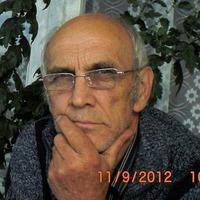 виктор, 72 года, Лев, Ульяновск
