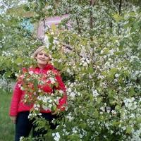 Елена, 48 лет, Лев, Магнитогорск