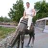 Ренат, 35, г.Шумиха