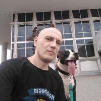 Дмитрий, 43 года, Близнецы, Красноярск