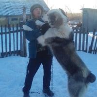Геннадий, 42 года, Лев, Саратов