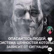 Кот 39 Казань