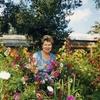 Лариса Васильевна, 60, г.Ростов-на-Дону