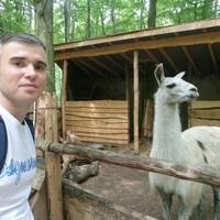 Николай, 35 лет, Овен, Северодвинск