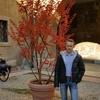 alex, 36, г.Bologna