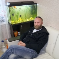 Alex, 37 лет, Скорпион, Санкт-Петербург