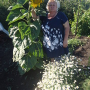 Наталья Величко 59 Самара