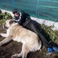 Гордон, 34 года, Скорпион, Кировград