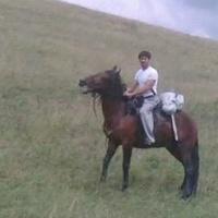 Anri, 38 лет, Лев, Черкесск