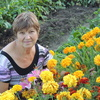 Валентина, 60, г.Кинешма