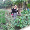 Татьяна Денисова, 66, г.Москва