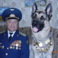 Виктор, 66 лет, Козерог, Воронеж