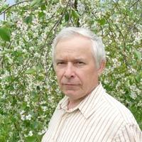 Volia, 71 год, Дева, Москва
