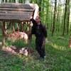 Іван, 37, Кам'янець-Подільський