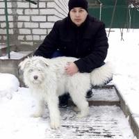 Евгений, 33 года, Близнецы, Брянск