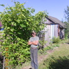 вадик, 34, г.Чебоксары