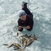 Лена, 46 лет, Овен, Иркутск