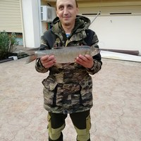 Ленар, 39 лет, Лев, Казань