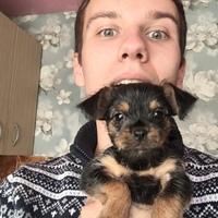 Роман, 24 года, Скорпион, Иркутск