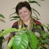 Ольга Романова, 59, г.Ревда