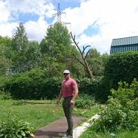 Владимир, 45 лет, Рак, Москва