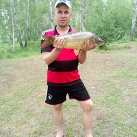 Альберт, 33 года, Весы, Кемерово