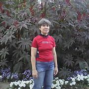 Инди 50 Барнаул