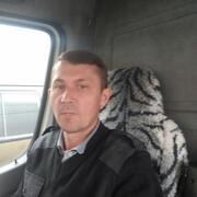 Миша 40 Борисполь