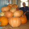 юрий, 53, г.Мариинский Посад