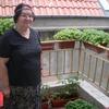 эльвира, 72, г.Варна