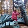 Лора, 56, г.Иркутск