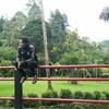 ian, 25, г.Джакарта