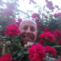 сергей, 63 года, Рыбы, Николаев