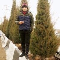 Абдул, 26 лет, Телец, Москва