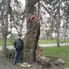 Юрий, 64, г.Слободской