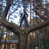 Valeriy, 36, Nizhneudinsk