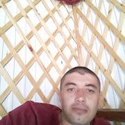 Алим 37 Иркутск