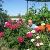 иван, 68, г.Белгород