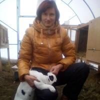 Ирина, 61 год, Скорпион, Тольятти
