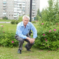 Андрей, 73 года, Близнецы, Серов