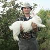 Дмитрий, 42, г.Ключи (Алтайский край)