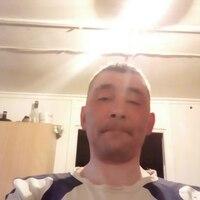 Серый, 37 лет, Стрелец, Ухта