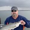 Greg, 57, Charlottesville