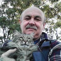 валерий, 62 года, Дева, Воронеж