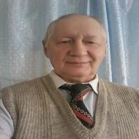 Viktor, 71 год, Рак, Самара