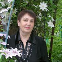 Людмила, 71 год, Козерог, Краснодар