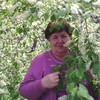 Нина, 71, г.Новосибирск