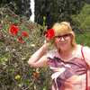 СВЕТЛАНА, 54, Донецьк