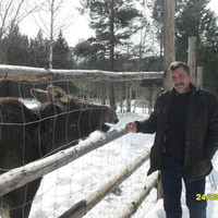 юрий, 61 год, Лев, Челябинск